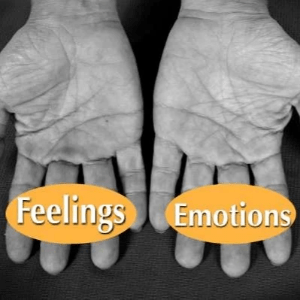Distinguish between Feelings and Emotions, Possibility Management