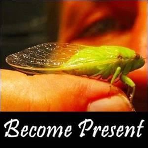 Becoming Present is one of a Possibilitator's 7 Core Skills, here is how, possibilitymanagement