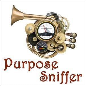 Purpose Sniffer, StartOver.xyz, Possibility Management