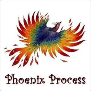 Phoenix Process StartOver.xyz Possibility Management
