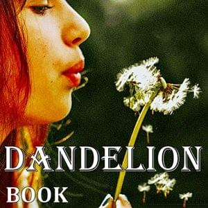 Dandelion Book, StartOver.xyz, Possibility Management