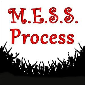 M.E.S.S. Process, StartOver.xyz Possibility Management