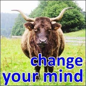Change Your Mind StartOver.xyz Possibility Management