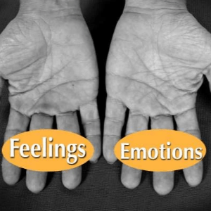 Feelings and Emotions, 4 Emotions, startover.xyz, Possibility Management