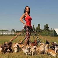 A woman standing in a field holding the leashes of at least a dozen small dogs that surround her