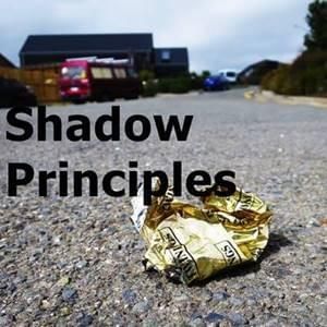 Shadow Principles StartOver.xyz Possibility Management