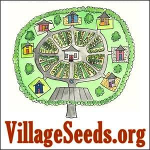 Village Seeds StartOver.xyz Possibility Management