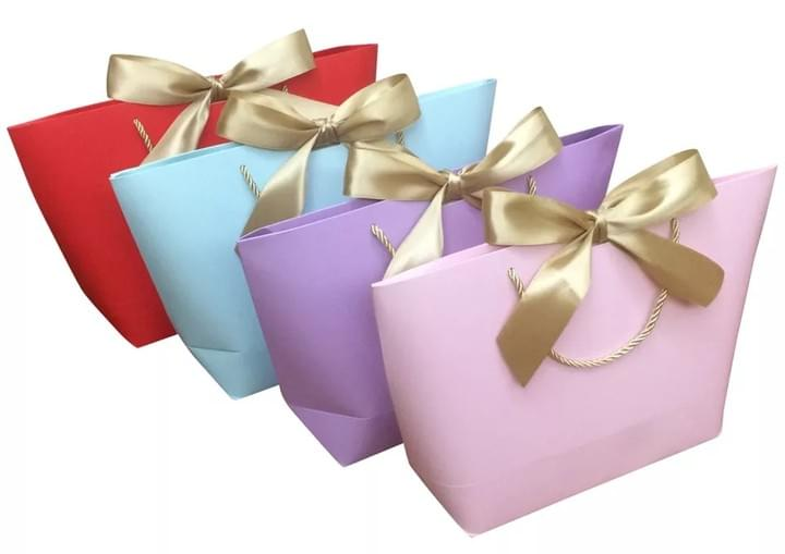 Shopping Paper Gift Bags with ribbon closure