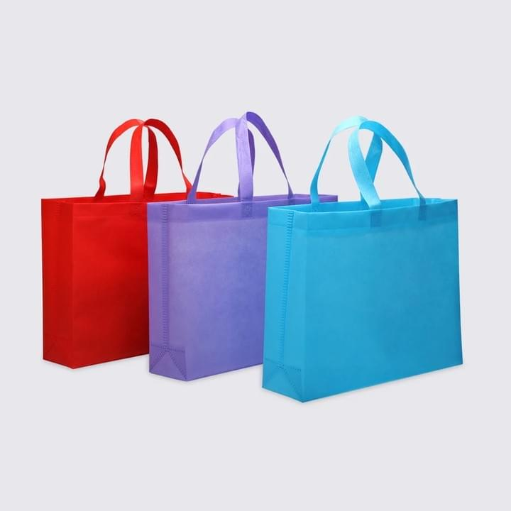 Custom Logo Promotional Product Non woven Bags
