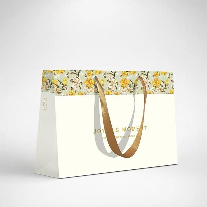 Custom Fashion Paper Shopping Bags with Ribbon Handle