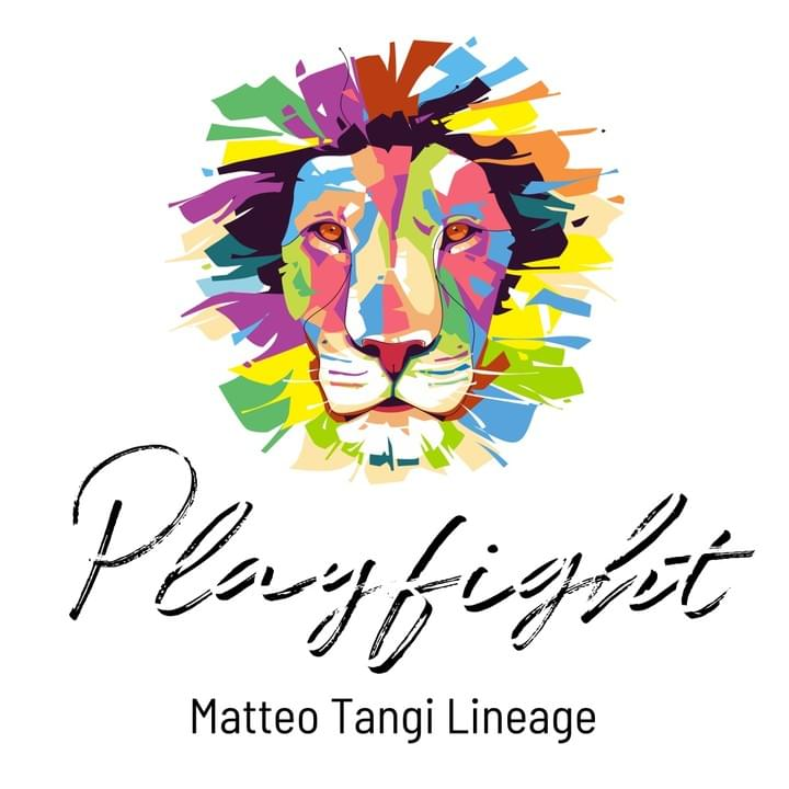 Playfight Logo white square