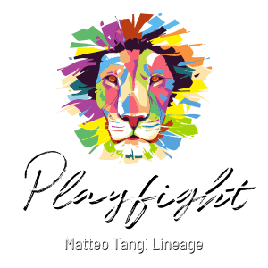 Playfight Logo - Transparent for dark background