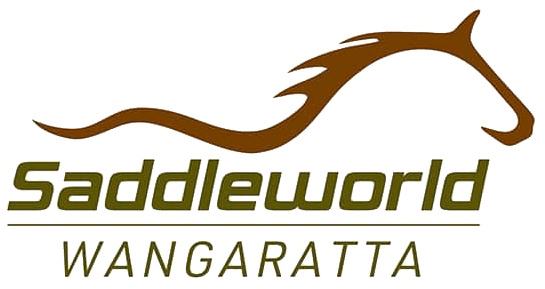 Logo of Saddle world