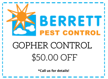 Berrett Gopher Control Dallas TX