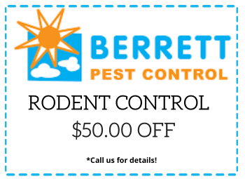 Berrett Mice Rodent Inspections Houston TX
