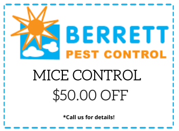 Berrett Mice Control Dallas TX