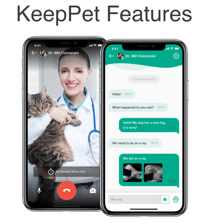 Online veterinarian for cats and dogs. Keep your pet safe and healthy with KeepPet app