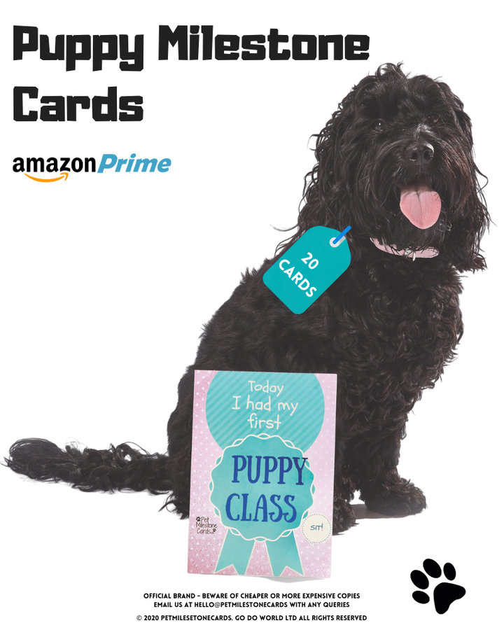 Puppy-Milestone-cards-amazon