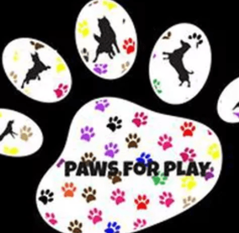 Paws For play CD Dog Training
