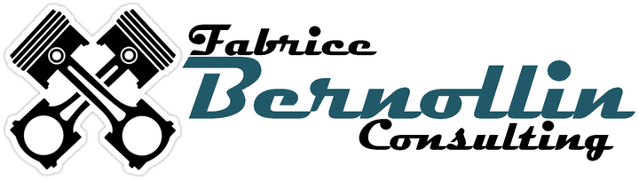 Fabrice Bernollin Consulting
