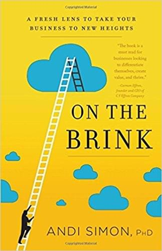 On the Brink: A Fresh Lens to Take Your Business to New Heights By Andi Simon