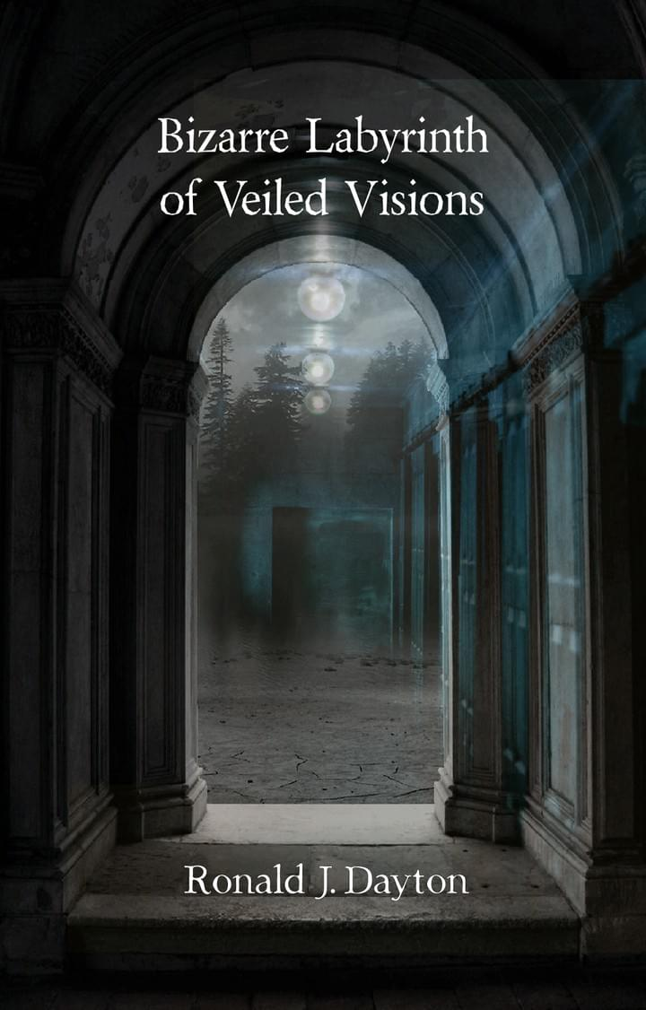 Bizarre Labyrinth of Veiled Visions. Ronald  J. Dayton