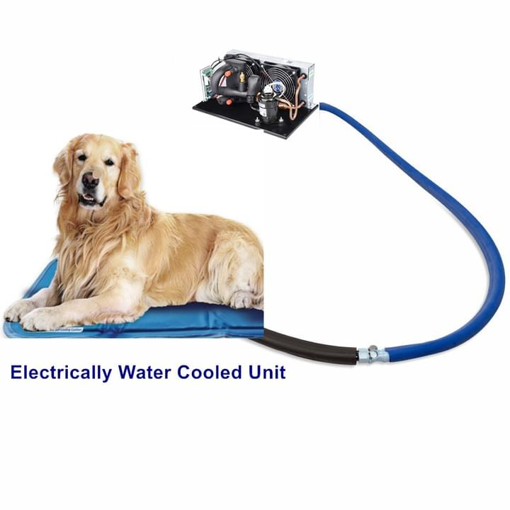 Plate Liquid Chiller for Pet & Dog Mat Cooling