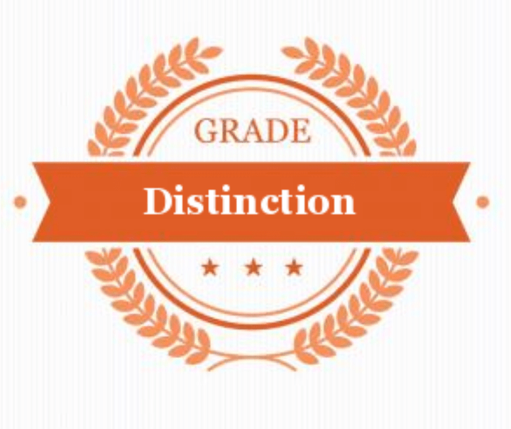 neil rochford digital marketing diploma distinction