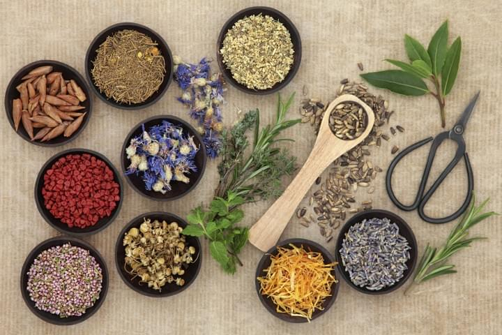 Naturopathy at Hills Osteopaths