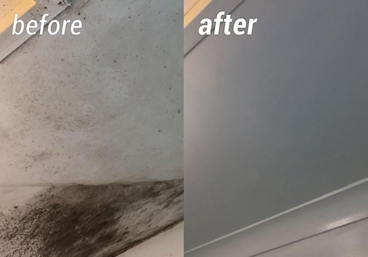 Mould Killer: Before & After