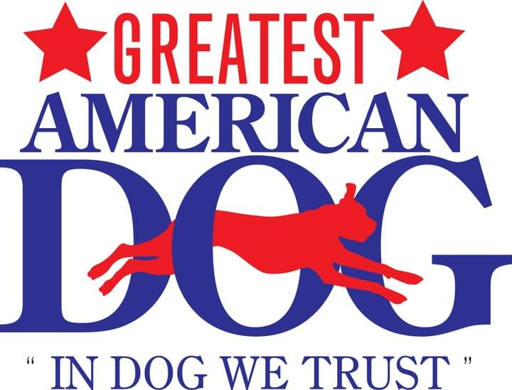travis-brorsen-greatest-american-dog-trainers-dog-training-new-york-city