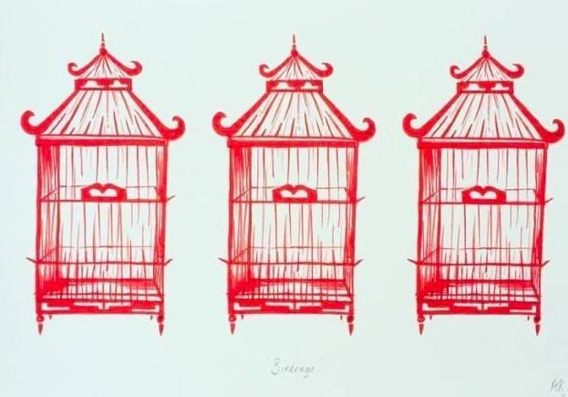 indigoprawn birdcages
