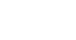 disrupt-now-program-and-podcast-by-natalie-viglione