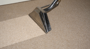 Carpet Cleaning In Wealden.