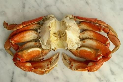 COOKED and CLEANED CRAB