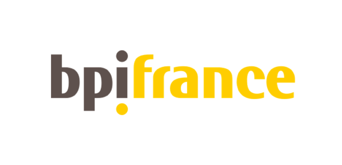 BPI France Logo - Risk Focus