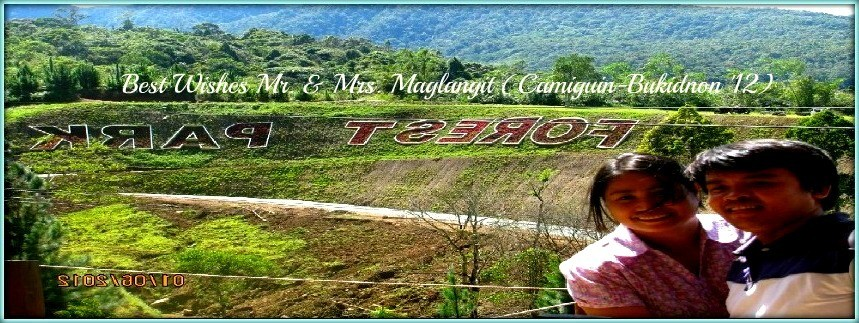 Mr. & Mrs. Maglangit - Camiguin-Bukidnon Tour for Two '12