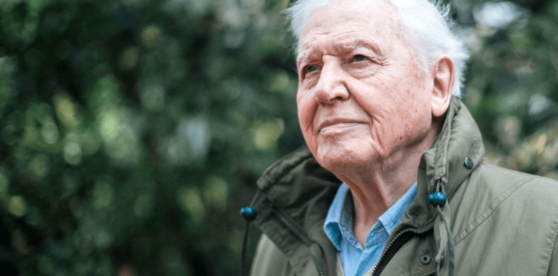 Sir David Attenborough, climate change the facts quote