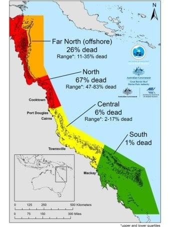 Great Barrier Reef Death Toll