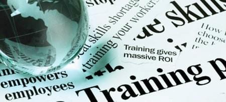 Training Programs Custom or Pre-developed DiSC assessments