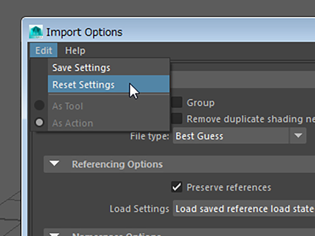 MAYA Import Options