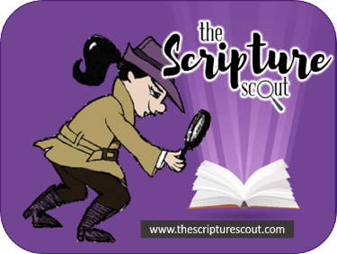 The Scripture Scout