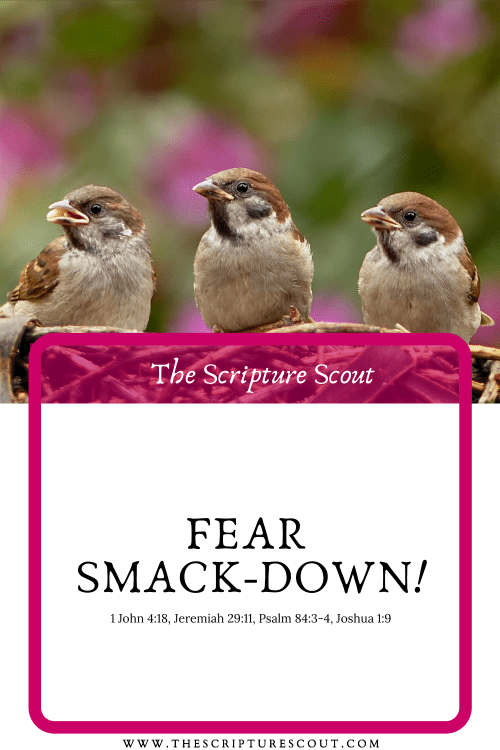 Fear Smack-down!