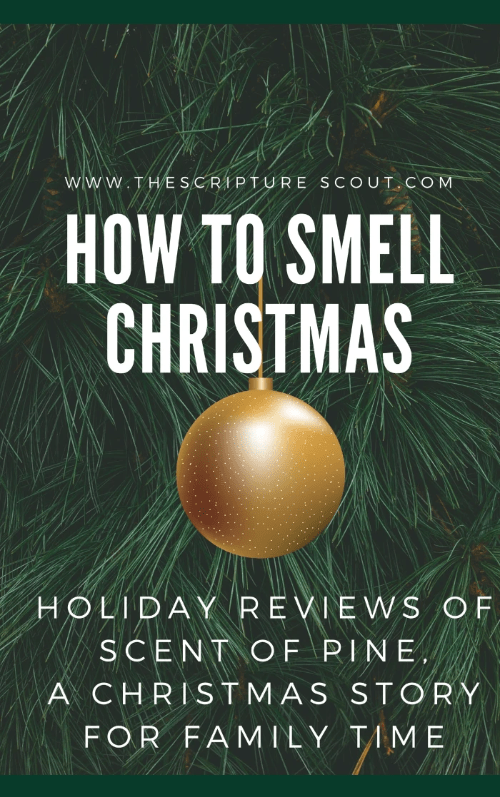 How to Smell Christmas