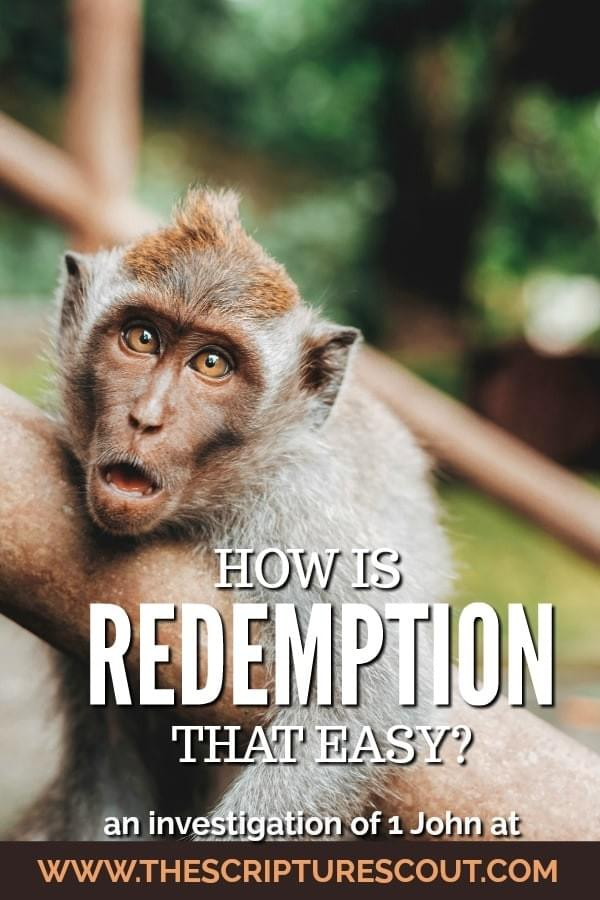 How is Redemption that Easy?  Studies in 1 John