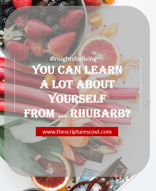 You Can Learn a lot about Yourself from ... Rhubarb?  Luke 22:61-62