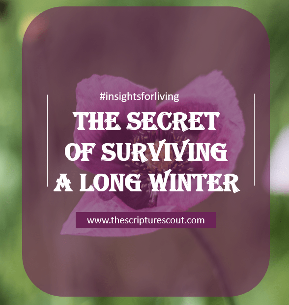 The Secret of Surviving a Long Winter  Psalm 27:1