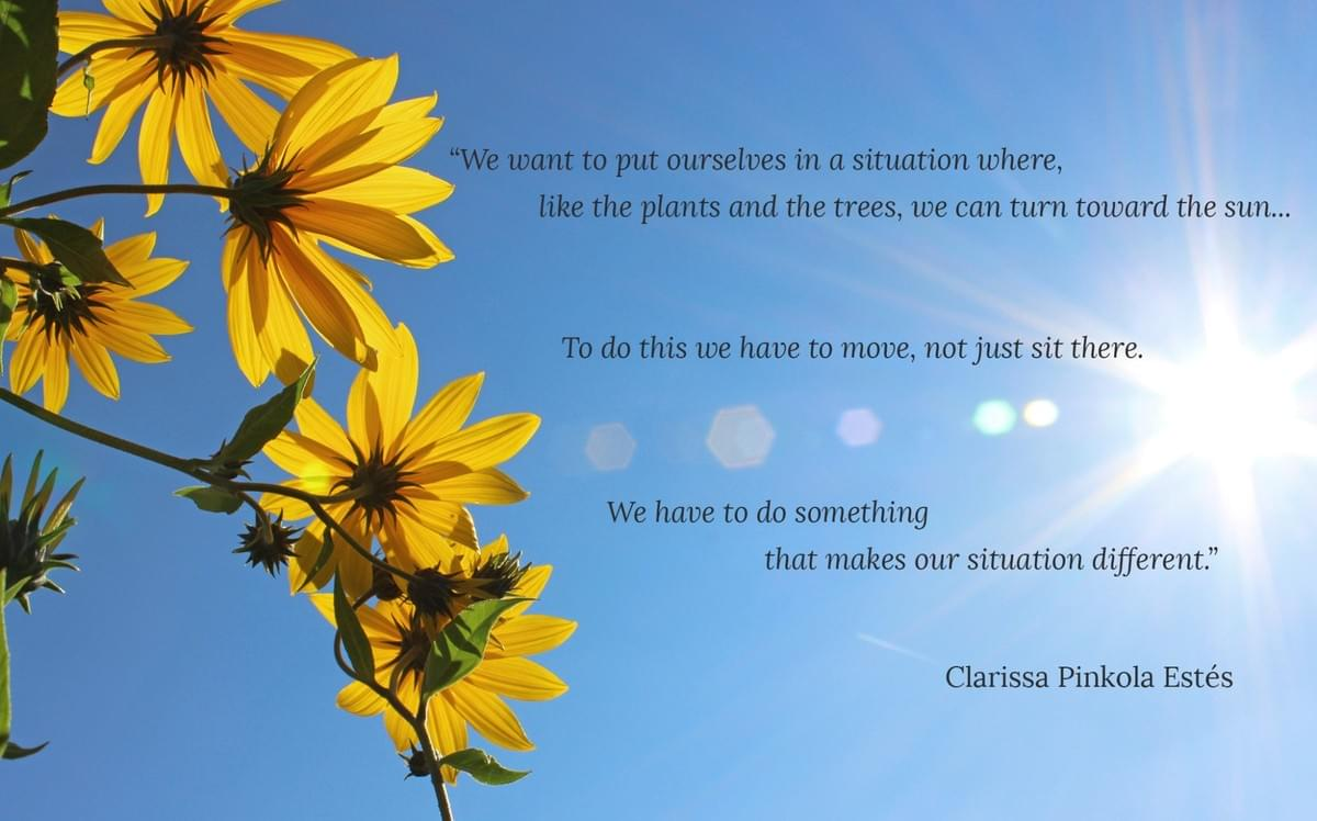 "Yellow flowers facing the sun against blue sky with Clarissa Pinkola Estes quote ""turn towards the sun"""
