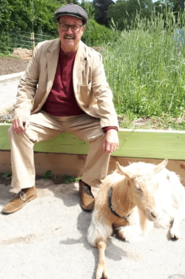 TWO OLD GOATS AT THE FARM