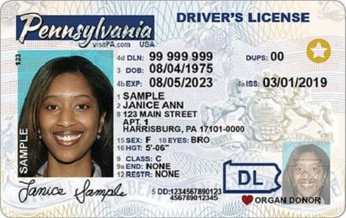 REAL ID-compliant driver's licenses usually have a gold and white star graphic on them.
